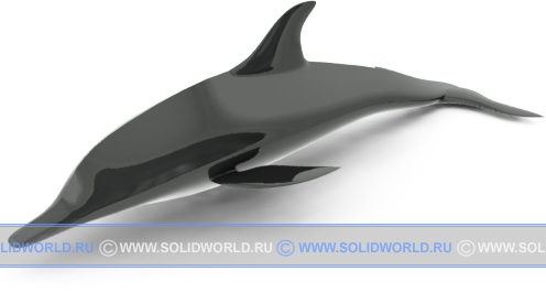 Модель дельфина.
