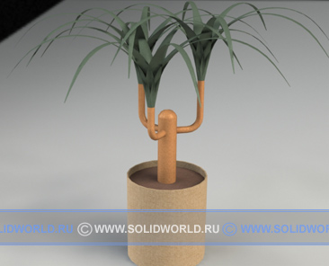 3d модель комнатного растения
